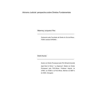 Ativismo Judicial: perspectiva sobre Direitos Fundamentais - FDSM