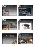 Fisiologia do Comportamento - UFF - Page 7