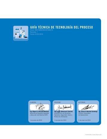 guíA técnicA De tecnoLogíA DeL PRoceSo