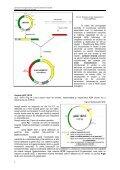 Cap. 3.1 Vectori utilizaţi în clonarea genetică la - Page 3
