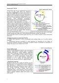 Cap. 3.1 Vectori utilizaţi în clonarea genetică la - Page 7