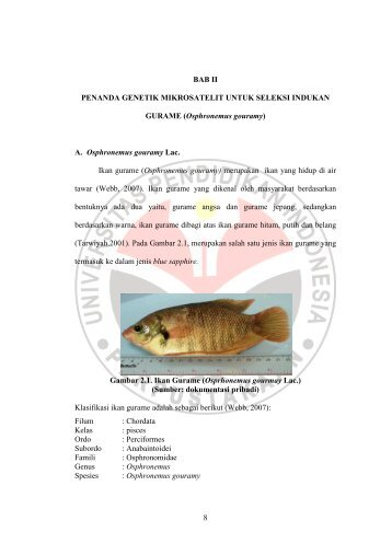 bab ii penanda genetik mikrosatelit untuk seleksi - Repository UPI