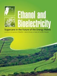 Ethanol%20and%20Bioelectricity%20book