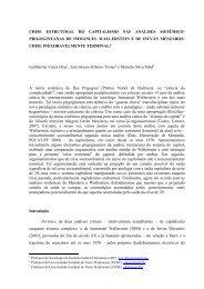 crise estrutural do capitalismo nas análises sistêmico-prigogineanas