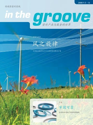 in the groove, all industries, 1/2008/chinese