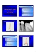 Aspectos de interesse à endodontia - endodontia.com.br - Page 4