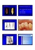 Aspectos de interesse à endodontia - endodontia.com.br - Page 7