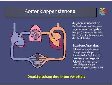 Microsoft PowerPoint - Vorlesung Vitien.ppt
