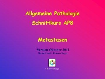 AP 8 – Metastasierung