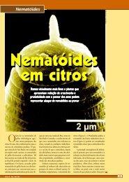 Nematoides parasitas dos citros no Brasil