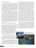 Revista Panorama da AQÜICULTURA Edição 76 março ... - Matsuda - Page 3