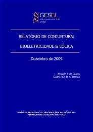 relatório de conjuntura: bioeletricidade & eólica - Nuca - UFRJ