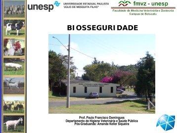 PROGRAMA DE BIOSSEGURIDADE APLICADO NA ... - Embrapa