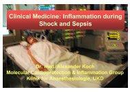 Sepsis-Pathophysiologie