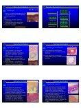 Tecido epitelial de revestimento - CCS - Page 2