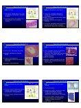 Tecido epitelial de revestimento - CCS - Page 3