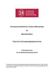 MPO 10/11 - Technische Universität Braunschweig