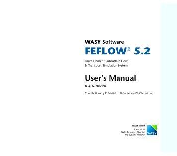 FEFLOW 5.2