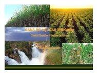 cana de açucar irrigada - Ministério do Desenvolvimento, Indústria e ...