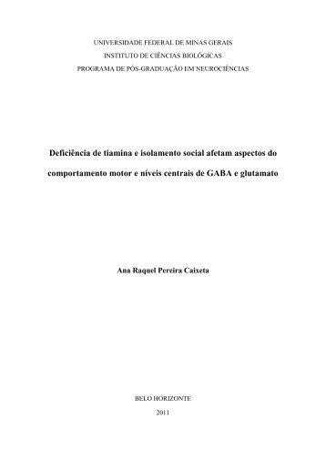 Introdução - Biblioteca Digital de Teses e Dissertações da UFMG