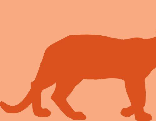 Mamíferos - Rede Pró-Fauna