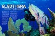 Um lugar nas Bahamas para quem procura praias desertas ...