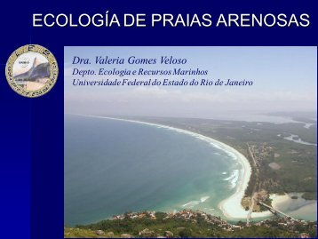 Ecologia de Praias Arenosas - Light