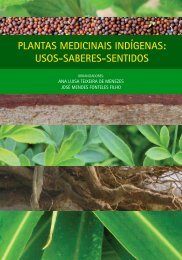 Plantas medicinais indígenas - IPECE — Instituto de Pesquisa e ...