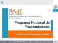 Programa Nacional de Emprendedores - Consejo Mexicano para el ...