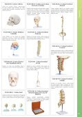 Baixar - Anatomic - Page 3