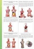Baixar - Anatomic - Page 6