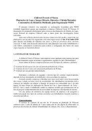 Comentários do Relatório Publicado pela Organização WRM