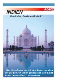 india 4-Seiter copy.indd - VDE