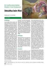 Dekubitus beim Rind - Vetion.de
