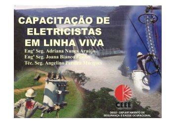CAPACITAÇÃO DE ELETRICISTAS EM LINHA VIVA