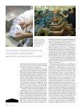 O relevo econômico do interior - Revista Pesquisa FAPESP - Page 5