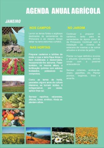 JANEIRO - jardins da varzea