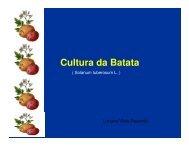 Cultura da Batata 4a AULA [Modo de Compatibilidade].pdf