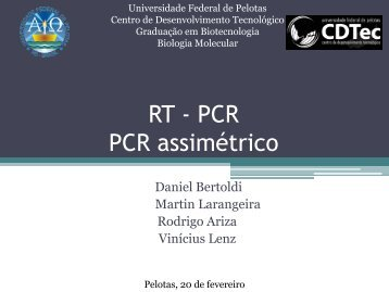 PCR Assimétrico RT- PCR - Universidade Federal de Pelotas