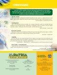 Orar é impactar a nação - Missões Nacionais - Page 4
