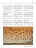 Actualidade PARABÉNS, DARWIN! - Parque Biológico de Gaia - Page 5
