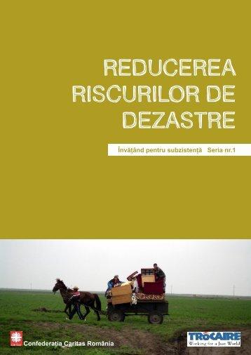 REDUCEREA RISCURILOR DE DEZASTRE