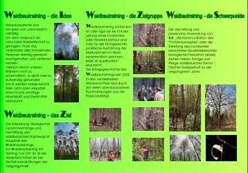 Flyer Waldbautraining - Landesforsten Rheinland-Pfalz