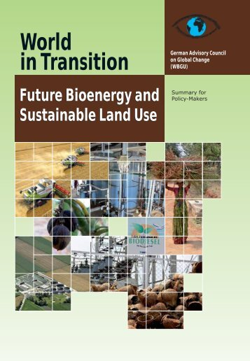 Future Bioenergy and Sustainable Land Use - WBGU