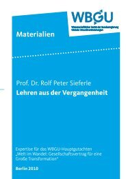 Download als PDF (1,8 MB) - WBGU