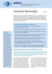 Factsheet Bioenergie - WBGU