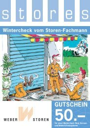 Im Wintercheck enthalten sind: 1Checkpunkt ... - Weber Storen AG