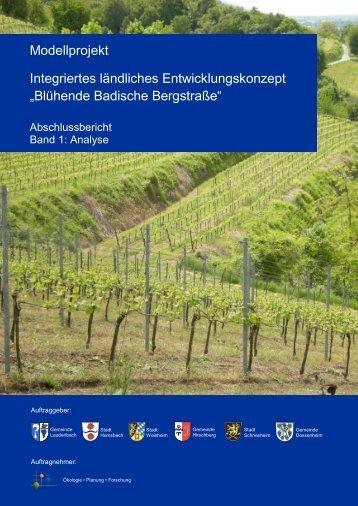 ILEK-Bericht Band 1 - Analyse - Stadt Weinheim