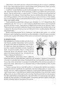 KodinKukat_kasvatusohjeet - Page 7