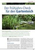 Garnelen und Nano-Aquarien komplett 60 Seiten, 24.25 - Seite 7